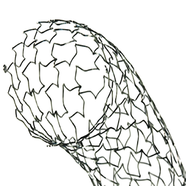 search results a PCI to FireWire sinus xl flex stent optimed
