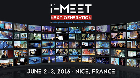 i-MEET 2016 - Friday afternoon