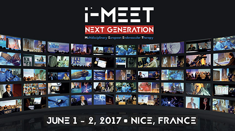 i-MEET 2017 - Friday afternoon